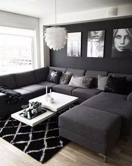 black color palette living room designs