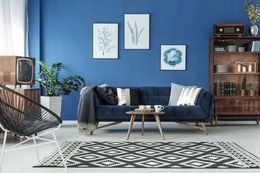 navy blue color palette combination living room designs