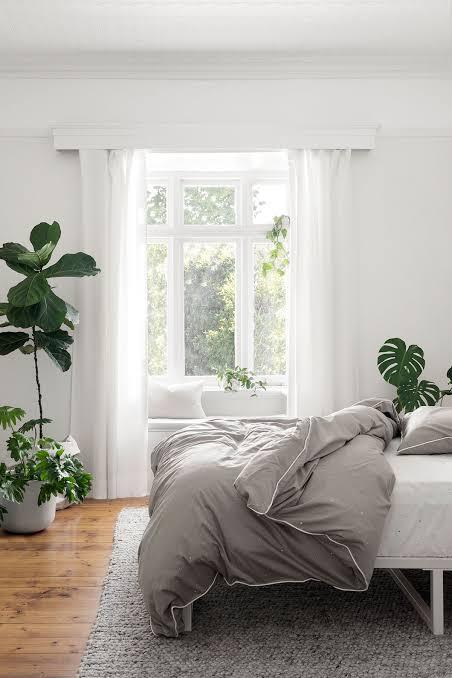 plants in bedroom decor ideas for bedroom