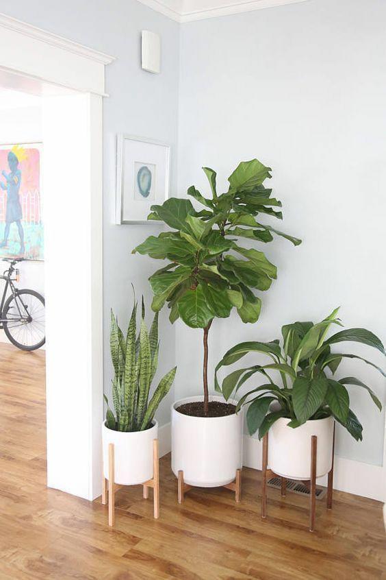 Picture 3 – Designer Corner Decor Ideas