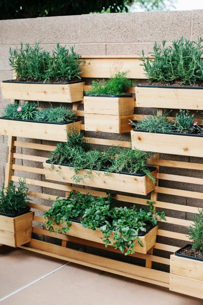 Picture 4 – Vertical Garden